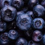 Banner Ithaka Organic Blueberry
